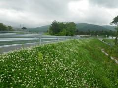 平成23年度東富士演習場関連公共用施設整備事業町道4196号道路改良工事(静岡県)
