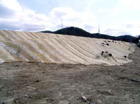 2.明らかに浸食しやすい砂質土の盛土法面であるが、種子散布工で大丈夫か。(大阪)
