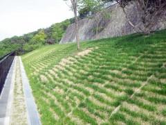 白水峡墓地4区33号墓所整備工事(兵庫県)
