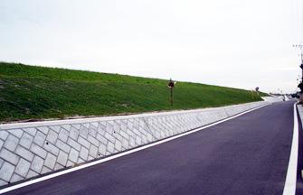 13.築堤工事で周辺住民の環境に配慮した緑化を希望している。(仙台)