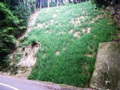 13大城林道災害復旧工事(福岡県)