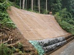 東根線第1号林道施設災害復旧工事(岩手県)