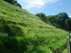 林地荒廃防止事業 下段地区(鹿児島県)