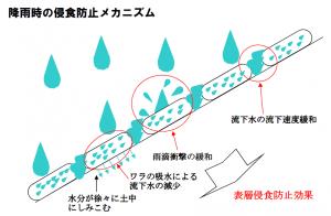 降雨時の侵食防止メカニズム