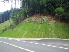 (主)丹波加美線道路改良工事(3工区)(兵庫県)