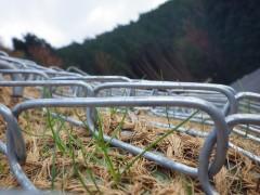 粟鹿山線森林管理道整備事業(25管第8-2号)(兵庫県)
