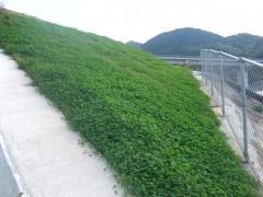 国道322号香春大任バイパス道路改良(曲り取付道路1工区)(福岡県)