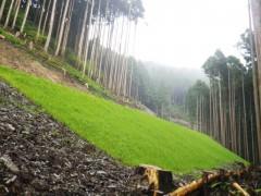 H25山林林開下名乗山線 南日浦三好市開設工事(徳島県)