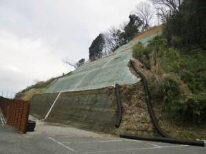 仮設道路の法面緑化