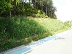 石綿管除去対策平野支線石巻平野工区外工事(愛知県)