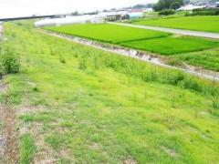 平成26年度 下ノ村堤防外1件工事(高知県)