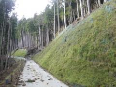 平成26年度 林道大谷山線開設工事(徳島県)