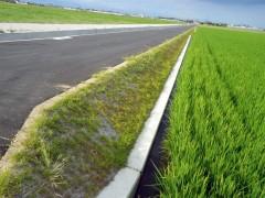 高田地区ほ場事業付帯農道整備工事(愛媛県)