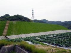 地域ため本(27債)第2号 砂田池改修(その4)工事(愛媛県)