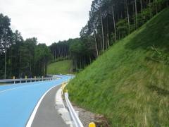 平成28年度災害復旧 県道熊本高森線鳥子地区道路復旧工事(熊本県)