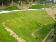 平成26年度森林管理道開設運床線2工区(道路整備交付金)(鹿児島)