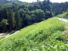 一般県道平阿尾線県単独道路維持修繕盛土工工事(富山県)