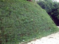 平成29年度 森林環境保全整備事業 仙貫赤根線(仙貫工区)(群馬県)