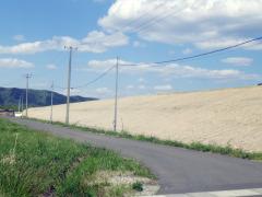 阿武隈川下流下名生地区築堤外工事(宮城県)