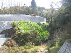 皇子川1第1砂防堰堤管理用道路3期工事(宮崎県)