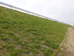 一般県道余目松山線道路改良工事(山形県)