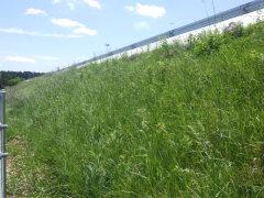みやぎ県北高速幹線道路(築館工区)道路改良工事(その10)(宮城県)