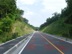 道路改築工事(取付道路その1)一般国道299号(埼玉県)