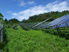 太陽光発電所工事(滋賀県)