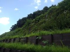 秋川自然公園法面復旧工事(東京都)