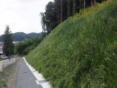 市道新庄1号線道路改良工事(岩手県)