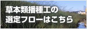 草本類播種工の選定フロー