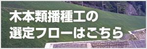 木本類播種工の選定フロー