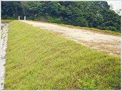 雑草の侵入を抑制